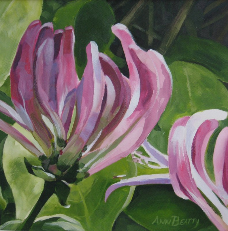 Hibiscus by Ann Beatty